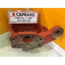 Поворотный кулак Carraro OE NO 145265
