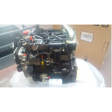 PERKINS ENGINE    RG38101